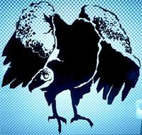 sac_vulture