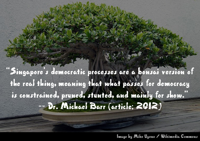 "Excerpts from ""The Bonsai under the Banyan Tree"", by Michael Barr"